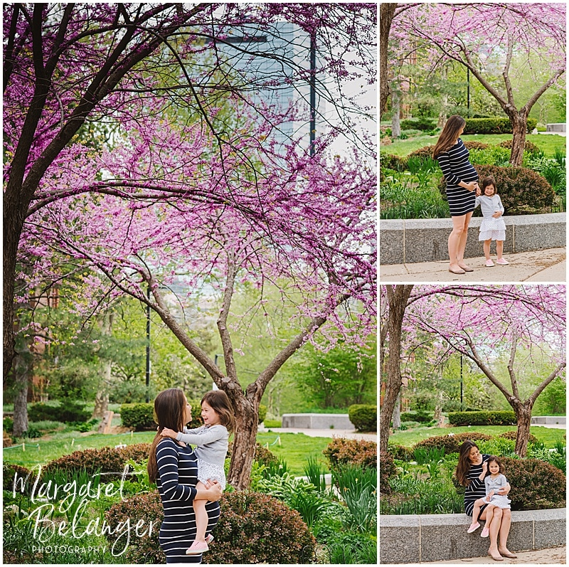 South End maternity session, in front of cherry blossoms
